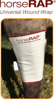Solequine Horse Cold Therapy Fore Leg And Hind Leg Therapy